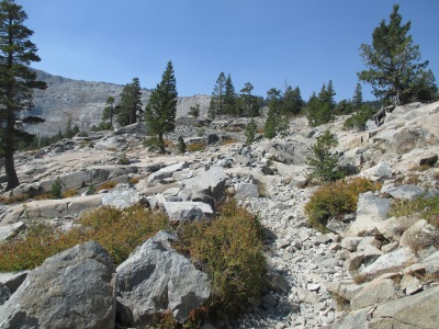 Skree/talus covered trail.